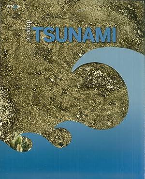Dopo lo tsunami. Salerno antica.