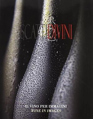 Scatti Divini. Il Vino per Immagini. Ediz. Italiana e Inglese.: Verduci, Demetria Trassinelli, ...