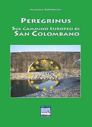 Peregrinus. Sul cammino Europeo di San Girolamo.: Bertoncini Manuala