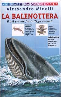 La balenottera. Il più grande fra tutti gli animali.