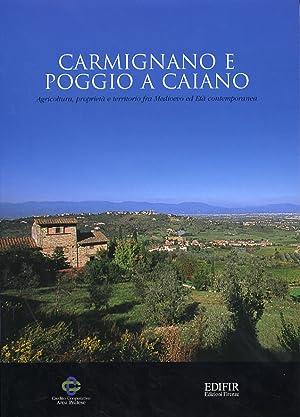 Carmignano e Poggio a Caiano. Agricoltura, proprietà e territorio fra Medioevo ed età...
