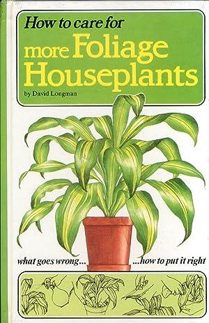 How to Care For More Foliage Houseplants.: Longman, David