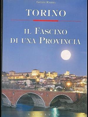 Torino. Il fascino di una provincia: Gianni Rabbia