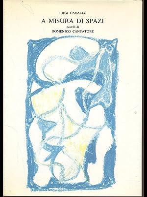 A misura di spazi: Luigi Cavallo