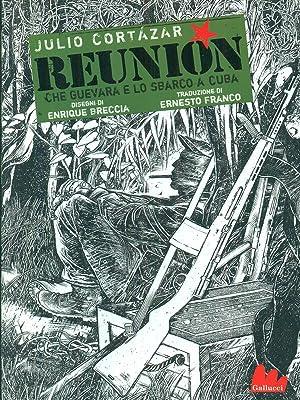 Reunion: Julio cortazar