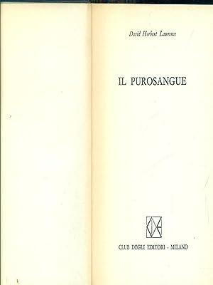 Il purosangue: David H. Lawrence