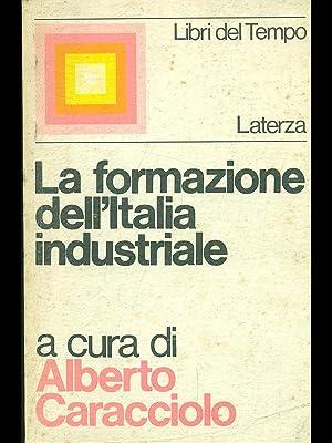 La formazione dell'Italia industriale: Caracciolo, Alberto