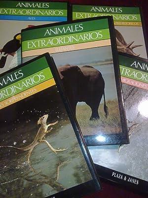 ANIMALES EXTRAORDINARIOS. DINOSAURIOS Y ANIMALES PREHISTORICOS.: WAGENSBERG, Jorge ( Dir ). AA.VV.
