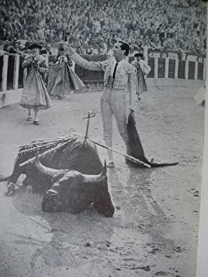 LA FIESTA TAURINA (UNA PASIÓN IBÉRICA): SAIZ VALDIVIELSO, Alfonso Carlos (Con la ...