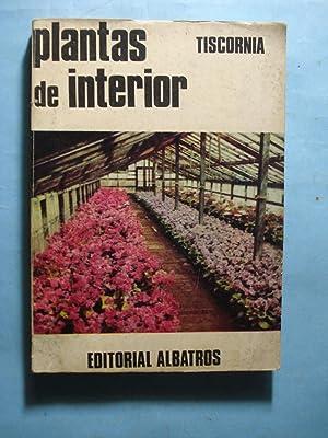 PLANTAS DE INTERIOR: TISCORNIA, Julio