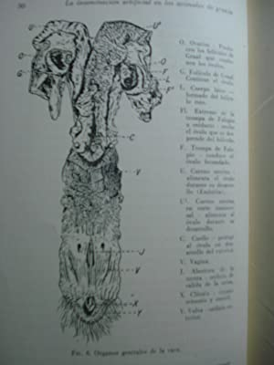 LA INSEMINACIÓN ARTIFICIAL EN LOS ANIMALES DE GRANJA: PERRY ENOS, J. + BARTLETT, John W. + ...