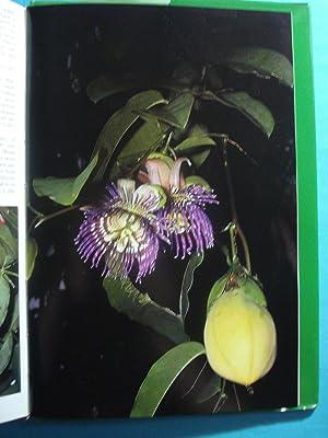 PLANTS AND FLOWERS OF SINGAPORE: POLUNIN, Ivan