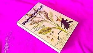 PLANTAS CURATIVAS Y SUS PROPIEDADES MEDICINALES, DR. MED M. FURLENMEIER 1984: DR. MED M. ...
