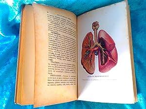 GUIA DE MEDICINA NATURAL, CASA SANTIVERI, DR. V. L. FERRANDIZ, 1937: CASA SANTIVERI, DR. V. L. ...