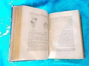 FLORA FARMACEUTICA, JUAN TEIXIDOR Y COS 1871: JUAN TEIXIDOR Y COS