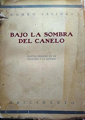 Bajo la sombra del canelo: tradiciones y: Salinas, Romeo (1893
