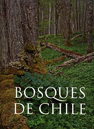 Bosques de Chile