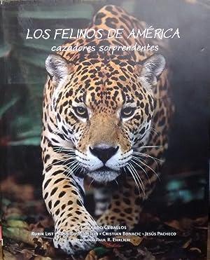 Los felinos de América. Cazadores sorprendentes: Ceballos, Gerardo - List Rurik - Medellín, ...