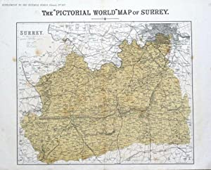 SURREY, LONDON, John Bartholomew original antique map 1877