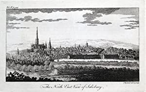 SALISBURY, WILTSHIRE, panoramic view, Dodsley original antique print 1764