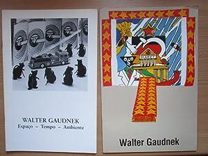 2 x Walter Gaudnek Espaco-Tempo-Ambiente und meine: Strreck: