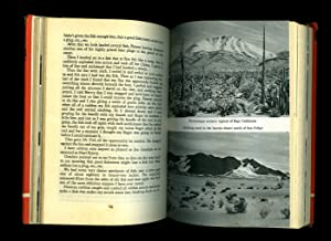 Hunting the Desert Whale [1]: Gardner, Erle Stanley