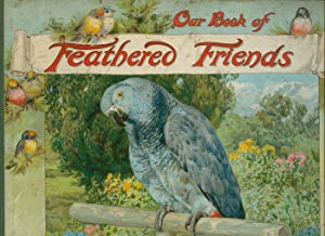 Our Book of Feathered Friends: M. A. Hoyer,