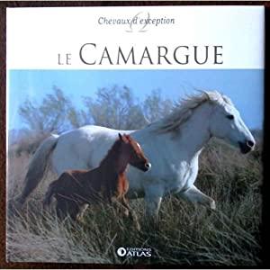 Le Camargue / chevaux d'exception