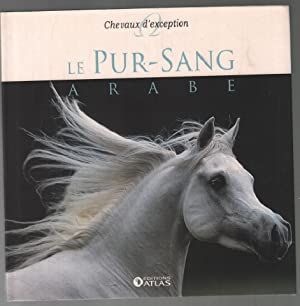 Chevaux d'exception : le pur sang arabe