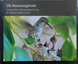 Oh Hummingbirds : Lessons from a Hummingbird Family