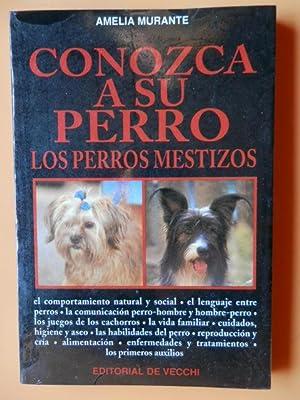 Conozca a su perro. Los perros mestizos: Amelia Murante