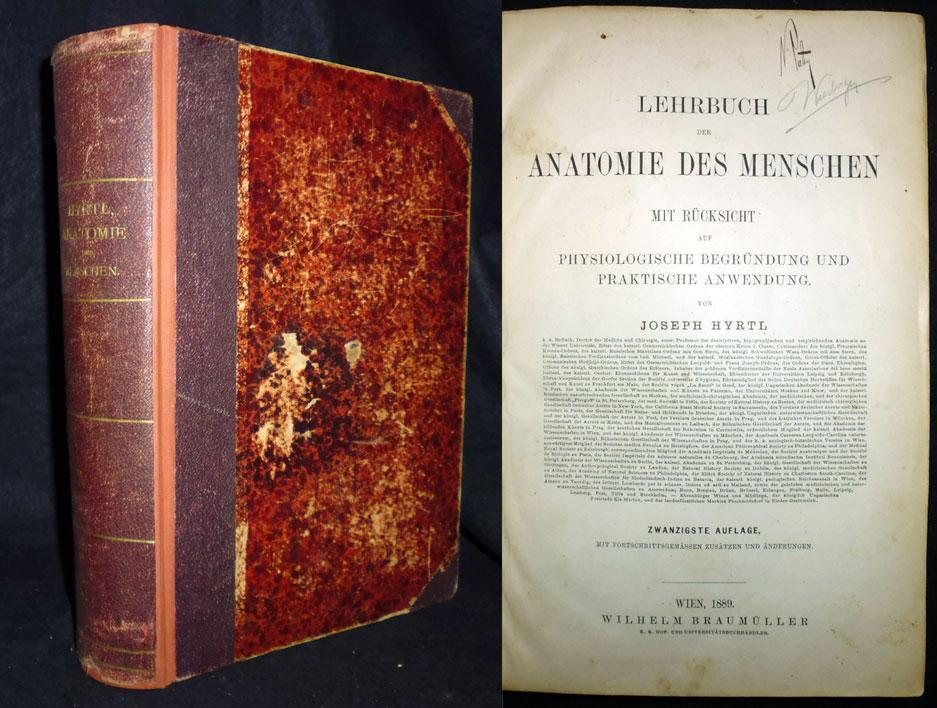 lehrbuch der anatomie des von hyrtl - ZVAB