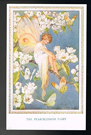 The Pear-Blossom Fairy Postcard - Fairies of the Countryside Series
