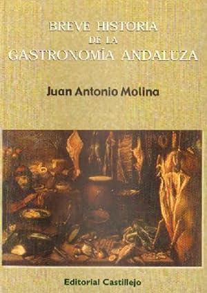 BREVE HISTORIA DE LA GASTRONOMIA ANDALUZA: MOLINA, JUAN ANTONIO