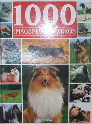 1000 IMAGENES DE PERROS: HUART, FRANCOIS