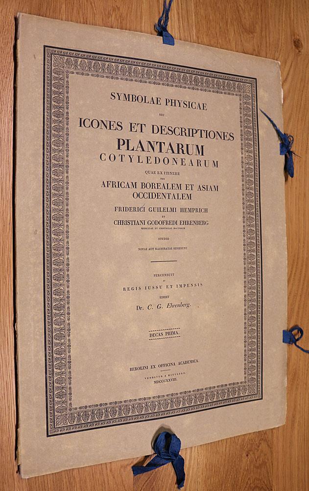 Symbolae Physicae seu Icones et Descriptiones Plantarum Cotyledonearum quae ex itinere per Africam Borealem et Asiam Occidentalem UND Symbolae Physic