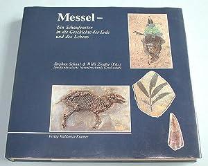 Messel - Ein Schaufenster in die Geschichte der Erde und des Lebens.: Schaal, Stephan und Willi ...