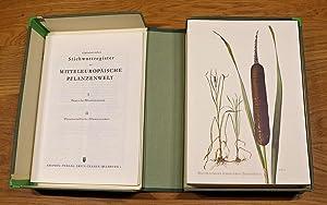Sammlung Naturkundlicher Tafeln. Mitteleuropäische Pflanzenwelt. Kräuter und Stauden.: ...