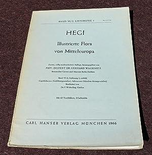 Illustrierte Flora von Mitteleuropa. Band VI/2, Lieferung: Hegi, Dr. Gustav: