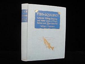 Fish by Schaldach: Schaldach, William J.