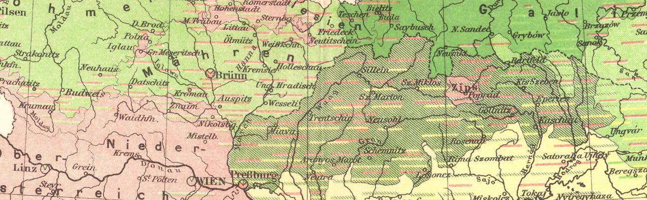 Ansichten & Landkarten Historische Landkarte Österreich Ungarn Ethnographie Karte Lithographie 1906