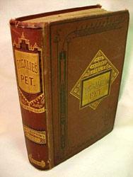 Rosalie's Pet (Miss Ashton's Girls no. 3): Joanna H. Mathews