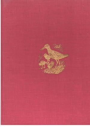 Shorelands Summer Diary: Tunicliffe C. F.