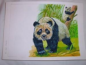 Acuarela Original - Original Watercolor : EL OSO PANDA: MASCAROS AMADOR Francisco