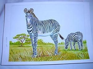 Acuarela Original - Original Watercolor : LA CEBRA: MASCAROS AMADOR Francisco
