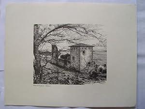 Litografía - Lithography : PALACIO DE LOS GUEVARA - SALVATIERRA (Alava): ALDAMA J. (Dibujo),...