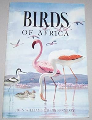 Birds of Africa: Williams, John (Author) and Rena Fennessy (Illustrator)