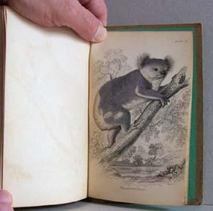 The Natural History of Marsupialia or Pouched Animals: Naturalist's Library, Vol. XI: ...