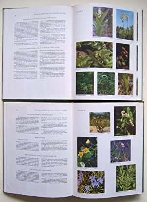 Wildflowers of the United States, The Northeastern States: Volume 1, Parts 1 & 2 (2 Volume Set)...