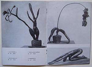 Doris Caesar January 15 - February 7, 1959 - Weyhe Gallery: Caesar, Doris & Weyhe Gallery